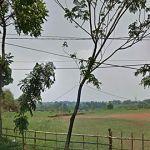 Commercial Land 28 Ha in Sentul