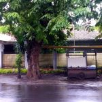 Spacious House at Tebet Timur Dalam, South Jakarta