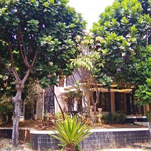 Rumah 2,5 Lantai Posisi Hook di Perumahan Tanjung Mas Raya