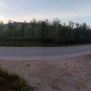 Tanah Strategis Pinggir Jalan Provinsi di Rembang